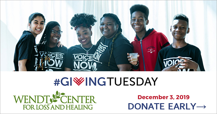 Donate to Wendt Center for Giving Tuesday