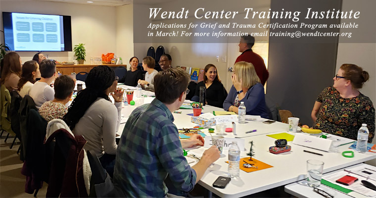 Wendt Center Training Institute